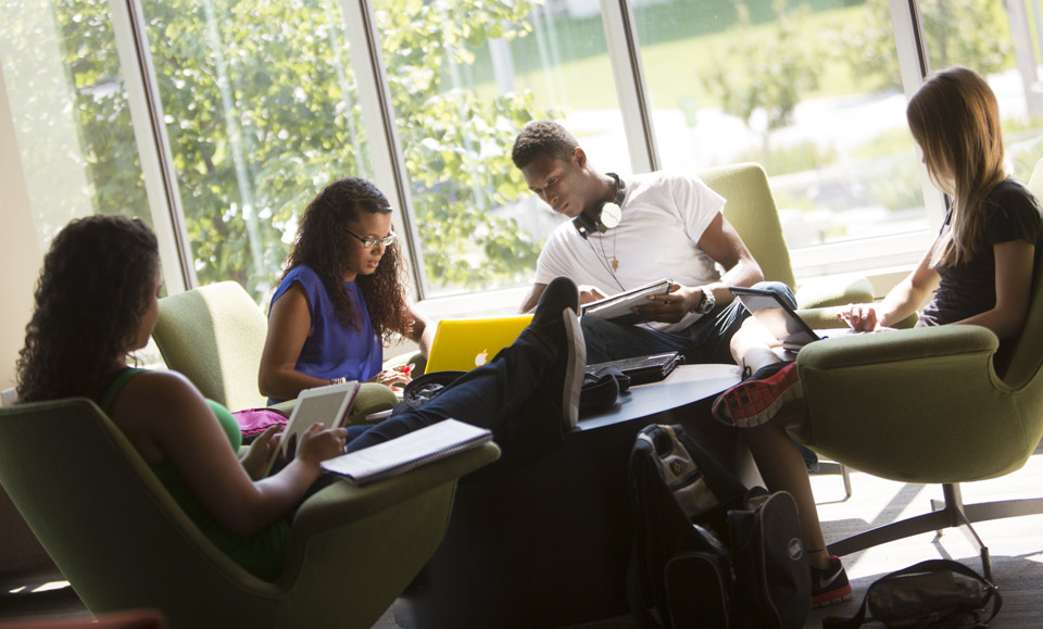 Students studying in Common Area.